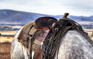 saddle-419745_640