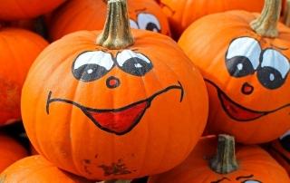 pumpkins-469641_640-min