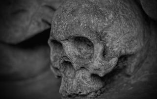 A grey stone skull